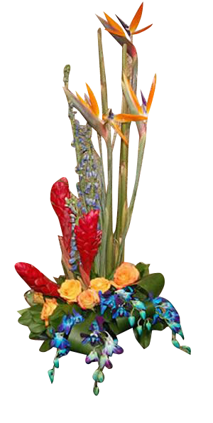 Tropical Arrangement Blue